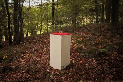 Obiekt 1 - w lesie